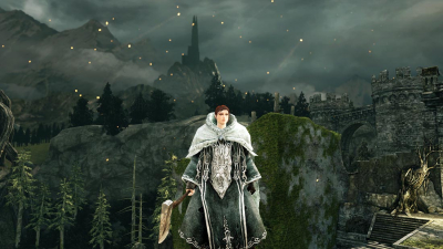 The World of Dark Souls II Forest of Fallen Giants Banner